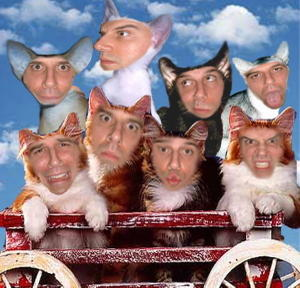 Brettgelman1000cats